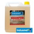 Shampoo Alfombra Espuma Controlada